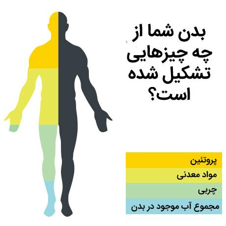 آنالیز بدن