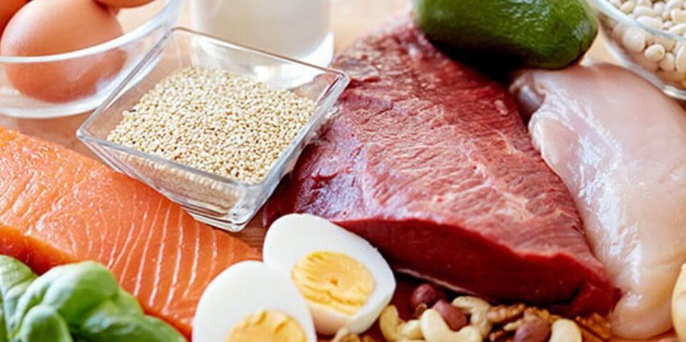 تغذیه افزایش حجم عضلات پروتئین