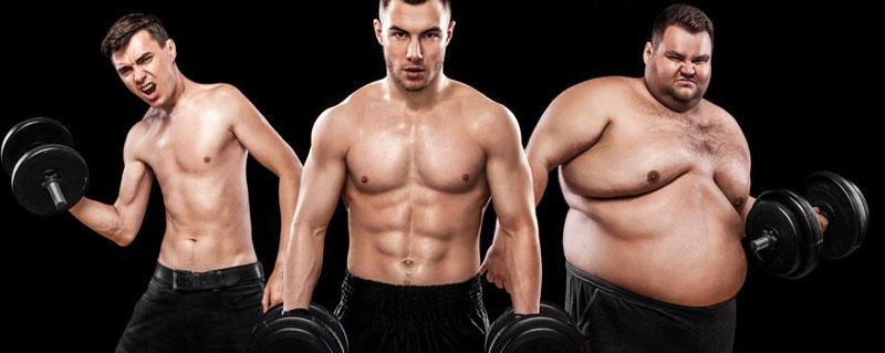 تمرینات بدنسازی بر اساس تیپ های بدنی